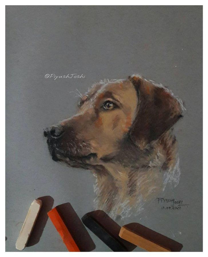 Dog pastel art work