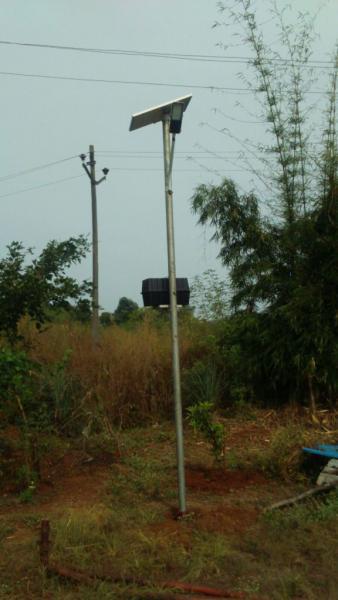 solar lamp 4.jpg
