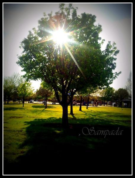sun_0.jpg