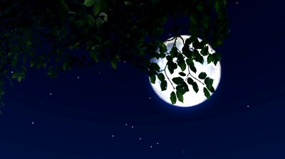 stock-footage-stars-twinkle-in-the-night-sky-with-a-full-moon.jpg