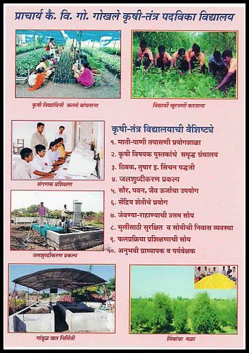 0haraali1 copy.jpg