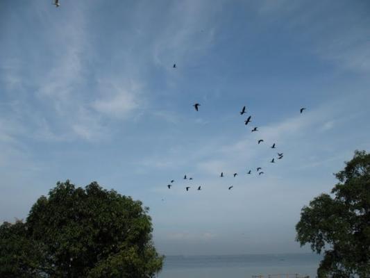 Kerala_029.jpg
