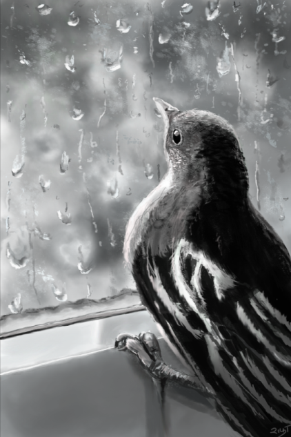 Bird Window 2-15.png