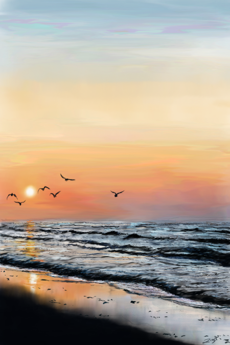 Sea Evening Birds -9.png