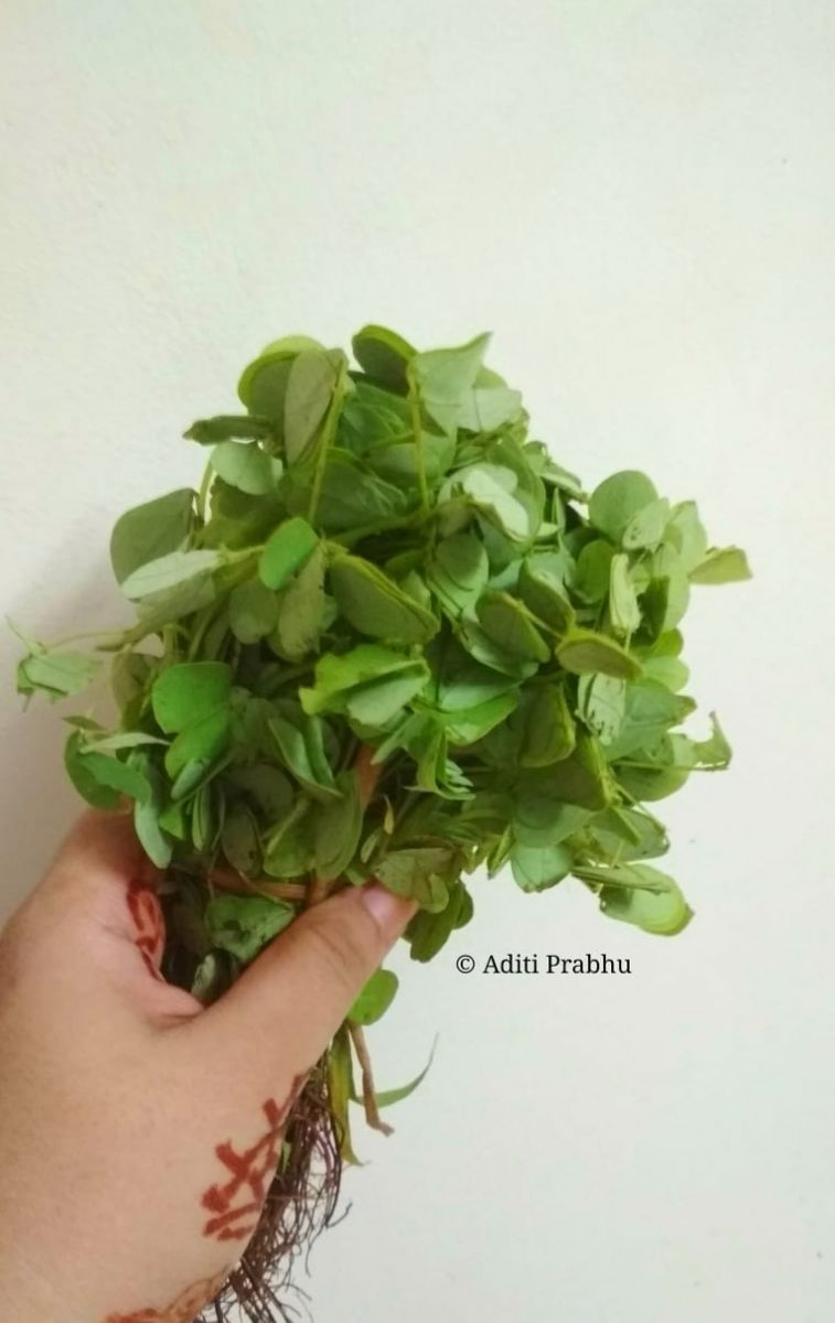 Cassia vegetable.jpg