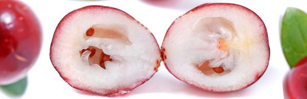 cranberry-seeds.jpg