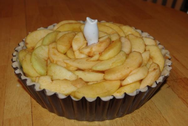 Apple Pie M - 4.JPG