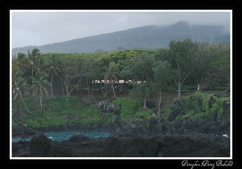 5. Maui - Hana.jpg