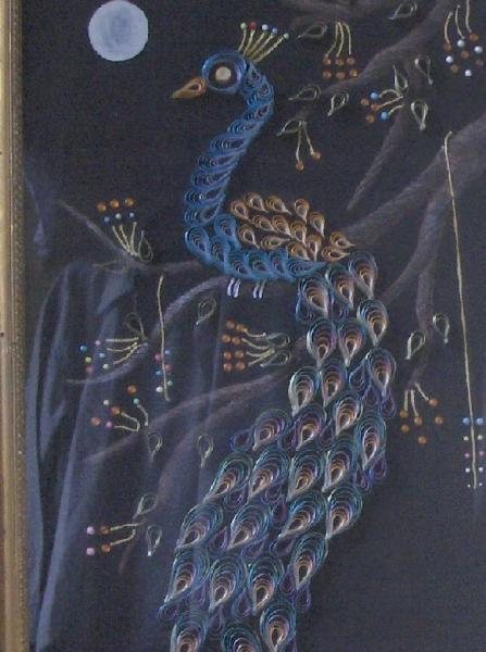 peacock frame 005_1.jpg