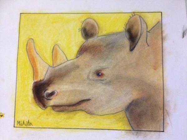 Rrhinosaur.jpg