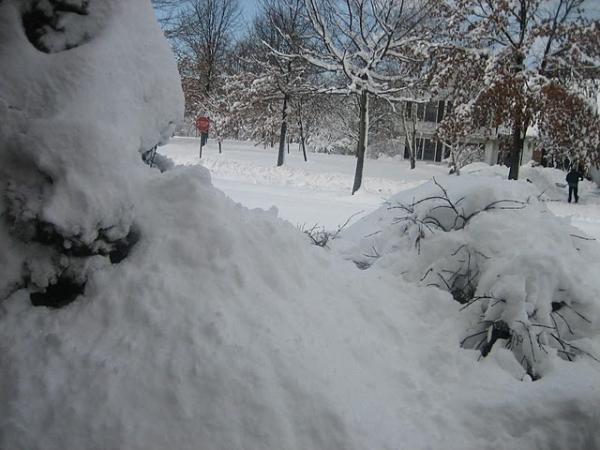 दिवसांपूर्वी झालेल्या हिमवादळात बुडलेले बाग राज्य .JPG