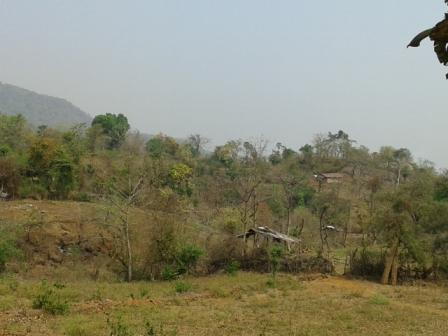 Copy of anubhav-may-yeoor-jungle-2.jpg