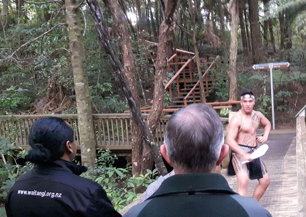 maori-13.jpg