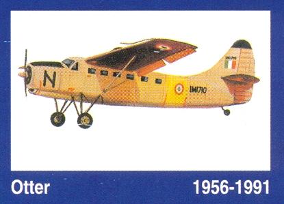 otter1956-1991.jpg