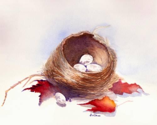 2_Nest1_2011.jpg
