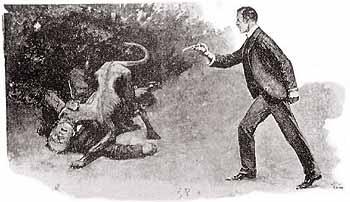 The dog fight.jpg