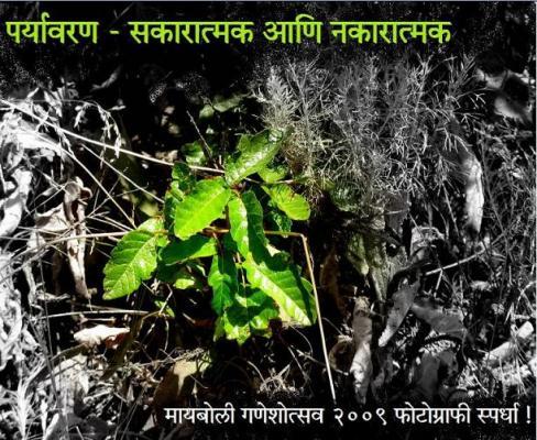 Paryavaran_Teaser_1.jpg