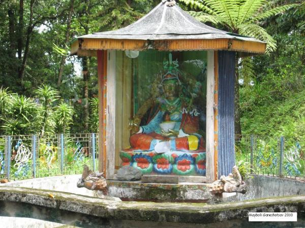 Prachi_Viruddha_entry_Ashutosh0711.jpg