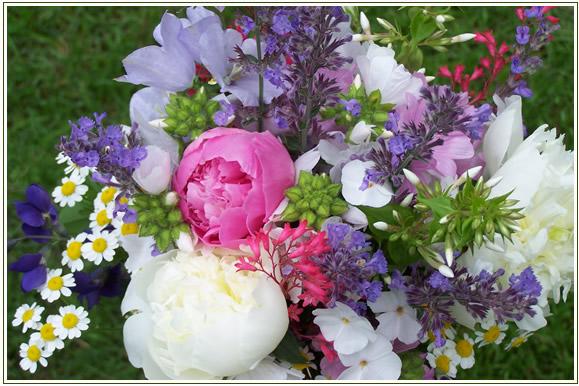 Perennial-Pleasures-Nursery-Custom-Services-Wedding-Flowers.jpg