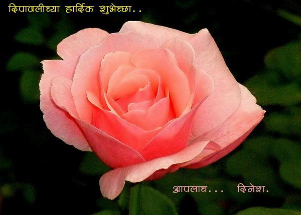 marathi bhetcards.jpg
