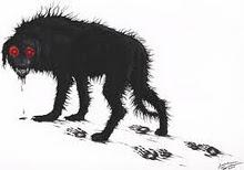 black dog last image.jpg