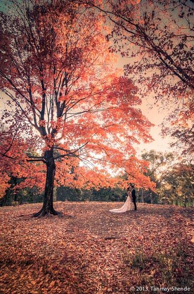 Fall in Romance.jpg