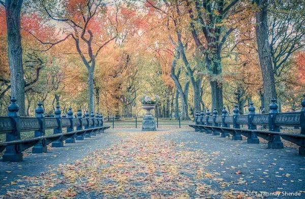 Fall_2013_11.jpg