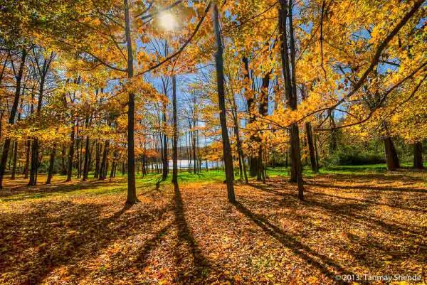 Fall_2013_2.jpg