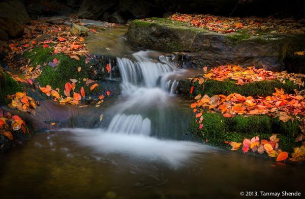 Fall_2013_4.jpg