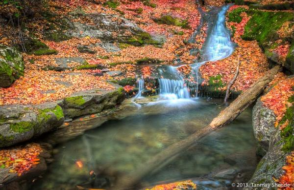 Fall_2013_5.jpg