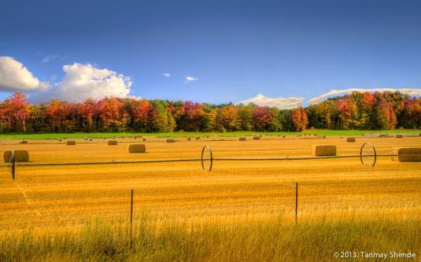 Fall_2013_6.jpg