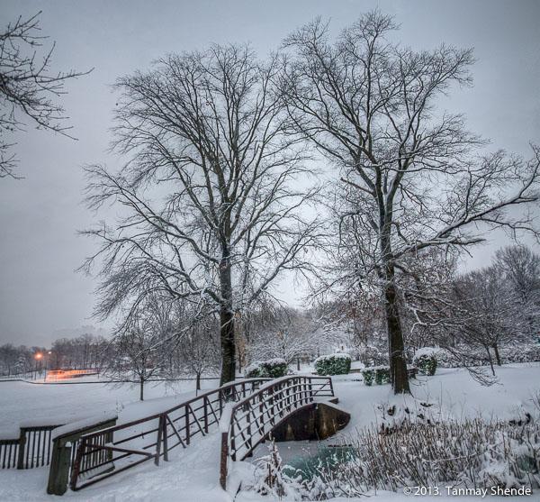Snow_2014_4.jpg