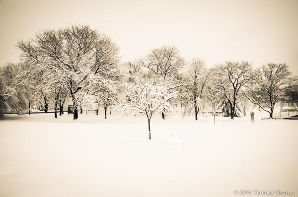 Snow_2014_8.jpg