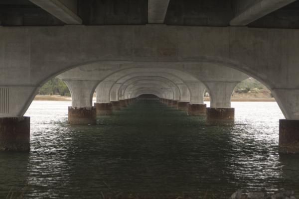 water-under-the-bridge-walt-reece.jpg
