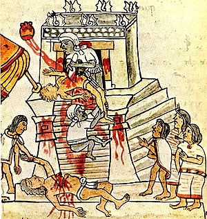300px-Codex_Magliabechiano_(141_cropped).jpg