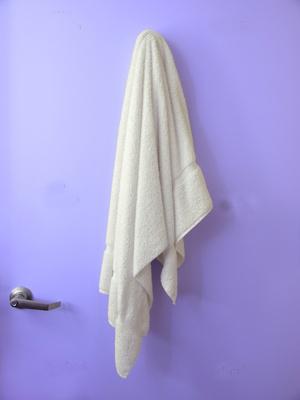 towel_0.jpg