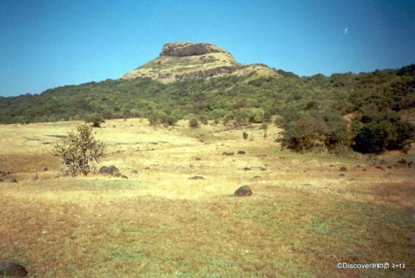 10_JunnarBhimashankar_DiscoverSahyadri.JPG