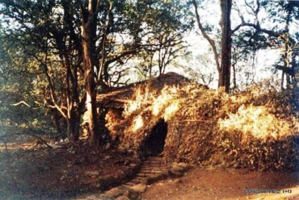 13_JunnarBhimashankar_DiscoverSahyadri.JPG