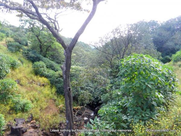 73Vajantri_KaulyaDhar_DiscoverSahyadri.jpg