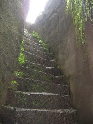 stepss.JPG