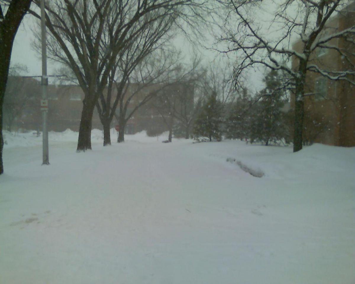 NDSU_Snow.jpg