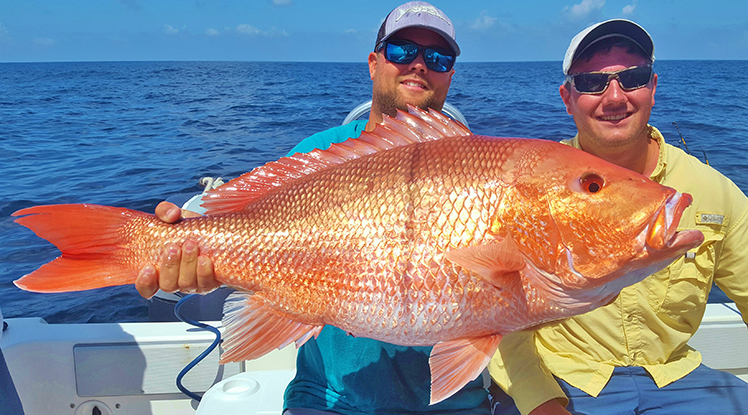 small-red-snapper.jpg