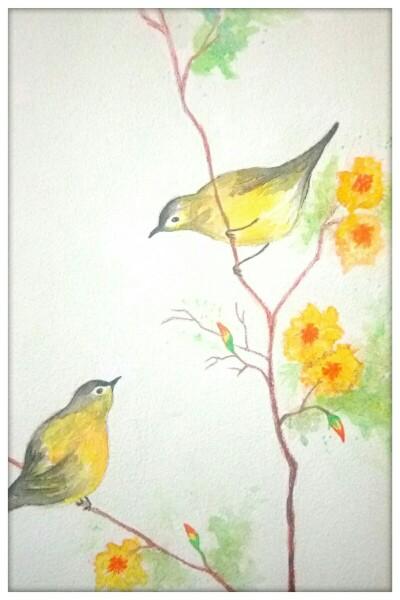 हळदुवे पक्षी.jpg