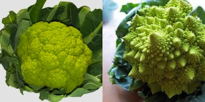 green-broccoflower.jpg