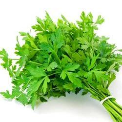 parsley-2 .jpg