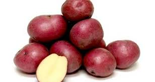 red waxy potato.jpg