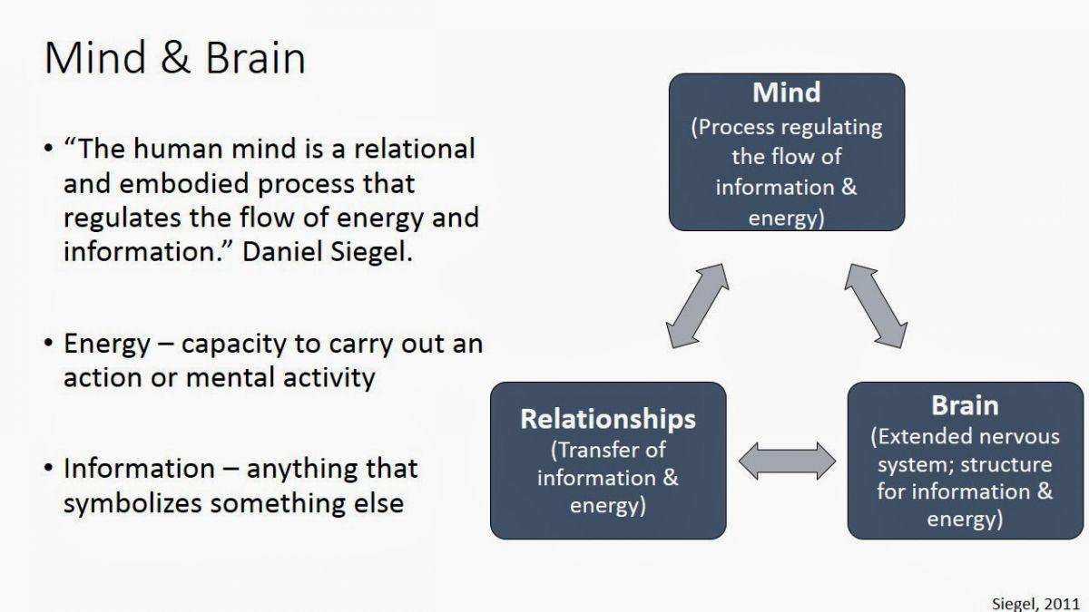 Mind & Brain.jpg
