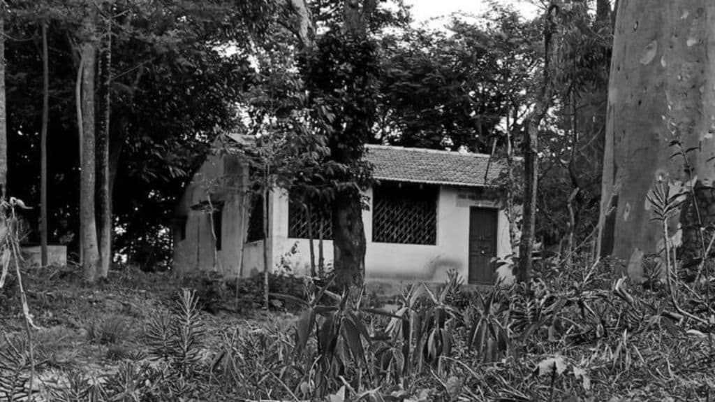 Foresthouse BW.jpg
