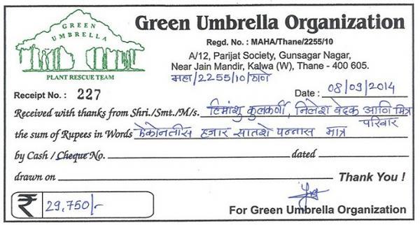 Green Umbrella receipt_0.jpg