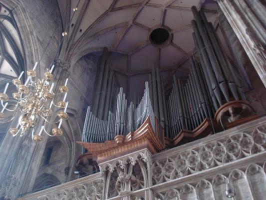 austria-1-organ.jpg